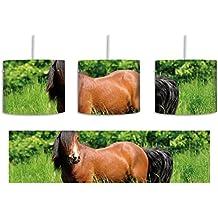 Suchergebnis auf Amazon.de für: Hängelampe Pferd