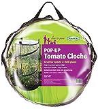 Haxnicks Cloche010101 Pop-Up Tomato Cloche, Transparent, 50x50x110 cm