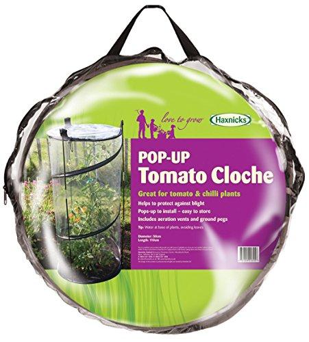 tierra-garden-50-6070-haxnicks-twist-a-tomates-cloche
