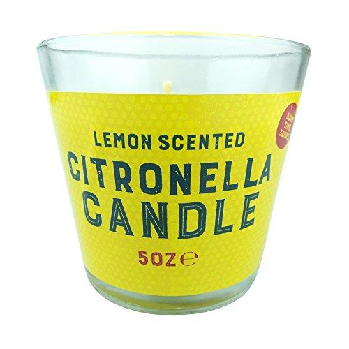 bid-buy-directr-herbal-essence-citronella-kerze-mit-zitrone-duft-in-glas-topf-perfekte-dekoration-zu