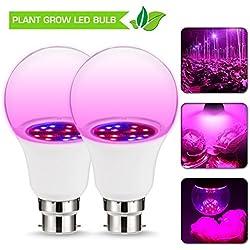 JandCase Grow LED-Lampe, 6 W, B22 A60, nicht dimmbar, 270 ° Abstrahlwinkel, rot/blaue Beleuchtung, Hydrokultur-Lichter für Garten, Gewächshaus, Innenwachstum, Bonsai-Pflanzen, Blumen, 2 Stück
