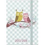 Brunnen–Agenda escolar, 1día en 1página, calendario: agosto 2017hasta julio de 2018, 352páginas, color búho