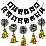 Rocwart 2018 - Suministros de Fiesta de graduación con borlas y Pompones para decoración de Pared y Mesa de Ceremonia de graduación