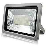 LED Scheinwerfer Flutlicht Fluter Strahler Außenstrahler Außenbeleuchtung Innenbeleuchtung IP65 Wasserdicht (100W, Kaltweiss)