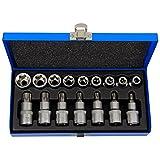 Haskyy 16 tlg. Torx Bit Set Nussatz Torx Vielzahn Nüsse Bit Stecknüsse Werkzeug Set Torx: T30 T40 T45 T50 T55 T60 T70 - E-Torx: E10 E11 E12 E13 E16 E18 E20 E22 E24
