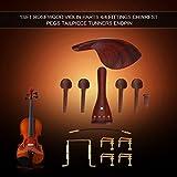Violin Fittings