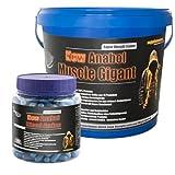 Anabol Blood Amino 350 Kaps.!+Anabol Muscle Gigant 2,27kg Banane! Whey Gainer Wheyprotein Molkenprotein Bodybuilding WPC Aminosäuren Muskelaufbau Anabol