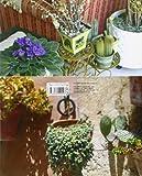 Image de Plantas en maceta (Plantas De Jardín)