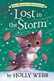 Lost in the Storm (Pet Rescue Adventures)