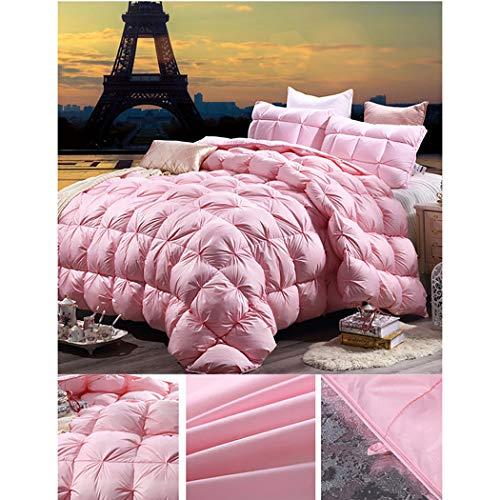 quality design 18b4e 93882 Piumino 95% Piumino D'Oca Bianco Trapunta Matrimoniale Caldo Ispessimento  Autunno e Inverno Hotel Bedding (Colore : Rosa)