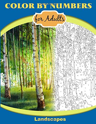 Adults: Landscapes: Extreme Color by Numbers Intermediate to Advanced ()