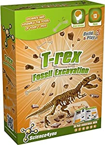 Science4you - Kit de excavación de fósiles T-Rex, Juguete Educativo