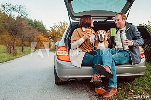 ty in car Truck - Loving Couple with Dog Sits in car truc #125687556 - Bild auf Forex-Platte - 3:2-60 x 40 cm / 40 x 60 cm ()