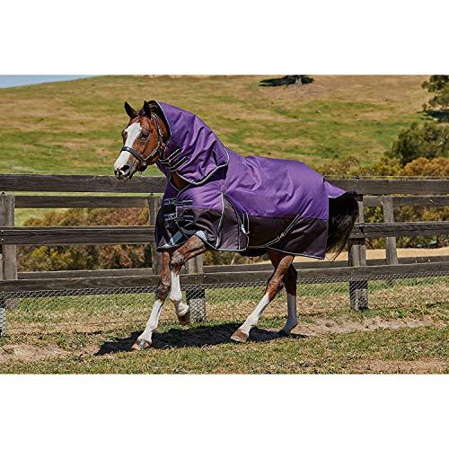 Pferdeausstattung & Zubehör Reit- & Fahrsport Weatherbeeta Comfitec Notwendig Kombo Hals Mittelgroß Pferd Teppich Wasserfest