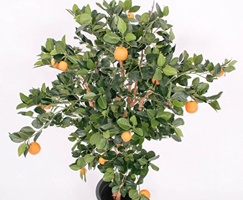 Künstlicher Orangenbaum mit 2 Echtstämme, 23 Früchte, Höhe 180cm – Kunstpflanze künstliche Blumen Kunstblumen Blumensträuße künstlich, Seidenblumen oder Blumen aus Plastik