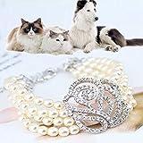 HuhuswwBin Hundehalsband, mehrlagige Kunstperlen, Strasssteine, Rose, Welpen, Hundehalsband, Schmuck, geeignet für Kleine und mittelgroße Hunde und Katzen
