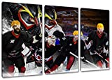 Bremerhaven Eishockey, Fan Artikel Leinwandbild 3Teiler