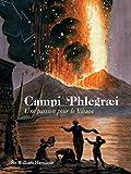 Campi Phlegræi: Une passion pour le Vésuve