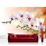 Liwwing - Mural de papel pintado con diseño de fotos de la orquídea de flores con diseño de flores de colour blanco crema y diseño abstracto