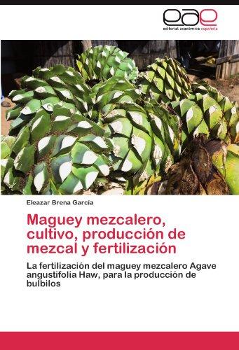 Maguey mezcalero, cultivo, producción de mezcal y fertilización por Brena García Eleazar