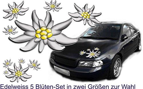 Auto Caravan Truck Bike Helm Fahrrad Helm Boot Aufkleber set Edelweiss Blüten
