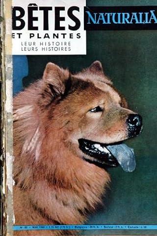 NATURALIA [No 80] du 01/05/1960 - LA CHASSE AUX LIONS