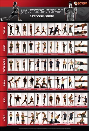 ripcords-exercise-guide-poster-resistance-band-workout-chart
