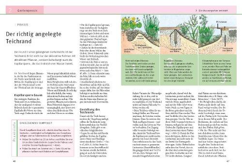 Gartenteiche anlegen und gestalten: Schritt für Schritt zum eigenen Wassergarten - Planungshilfen