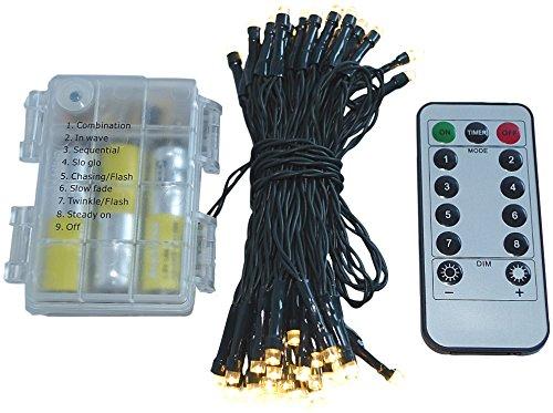 HiT Led Lichterkette Batterie 24 48 96 mit Timer und teilweise mit Fernbedienung grünes Kabel für innen und außen (48er + Fernbedienung)