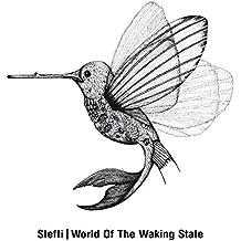 World of the Waking State (2lp) [Vinyl LP]