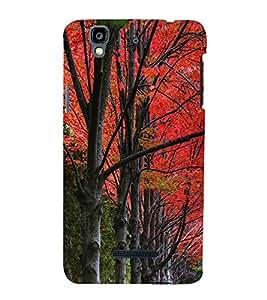 Beautiful Trees 3D Hard Polycarbonate Designer Back Case Cover for YU Yureka :: YU Yureka AO5510