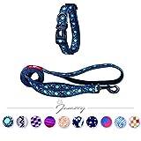 Jamory Hundehalsband Halsband Leine Joggingleine Halskragen Hund Set rogz Deko (M Hundehalsband + Leine Set, Blau Drucken)