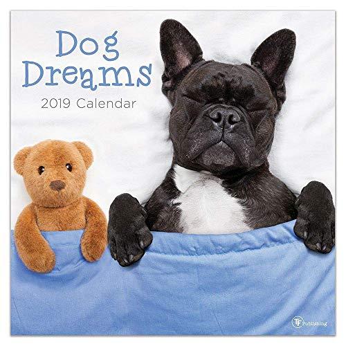 Dog Dreams Wandkalender, verschiedene Hunde nach Kalendern Dog Dreams Wall Calendar