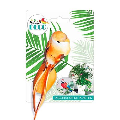 Déco Plantes - Petit Oiseau Orange CD3836