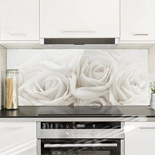 Bilderwelten paraschizzi in vetro white roses - Paraschizzi per cucina ...