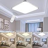 ETiME 12W Dimmbar Ultraslim LED Deckenleuchte mit Fernbedienung Modern Deckenlampe 30cm Flur Wohnzimmer Schlafzimmer Küche Leuchte 2700-6500K Silber (30x30cm 12W Dimmbar) [Energieklasse A++]