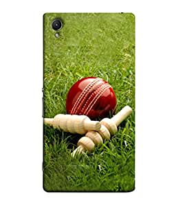 PrintVisa Designer Back Case Cover for Sony Xperia M4 Aqua :: Sony Xperia M4 Aqua Dual (Ball And Bales Design)