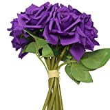#5: Fourwalls Single Carnation (Set of 15)