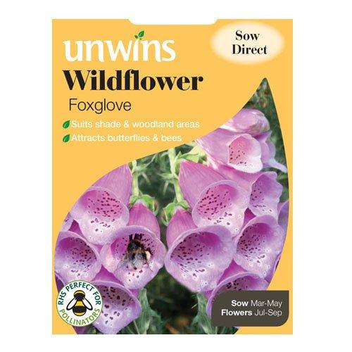 westland-wildflower-foxglove-seeds