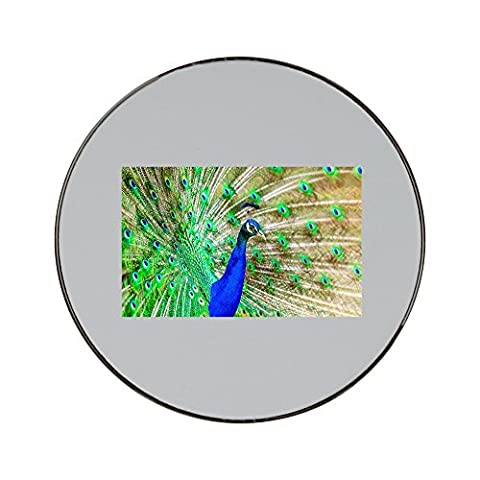 Metal round fridge magnet with Peacock, Bird, Plumage, Exotic, Bright