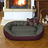 BedDog 4in1 Bed for a dog SUNNY XL till XXXL, 13 colours to choose, pillow for a dog, sofa for a dog, basket for a dog,bordeaux/grey XXXL, 150x120 cm (59x47 inch)