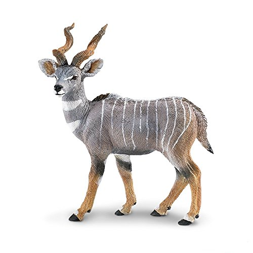 Safari Lesser Kudu