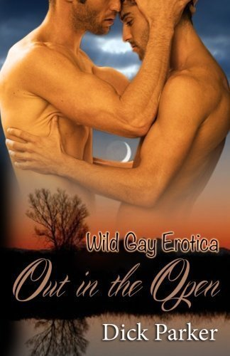 Out in the Open: Wild Gay Erotica