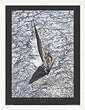 Carlo Borlenghi Stampa D'Arte e Cornice (MDF) Pino Rustico - Maxi Yacht - Rolex Cup (80 x 60cm)