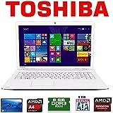 Toshiba C70D-B-311 AMD A4-6210 APU 8GB 1TB Radeon R3 Graphics 17.3 Usado