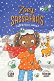 Caterflies and Ice (Zoey and Sassafras, Band 4)