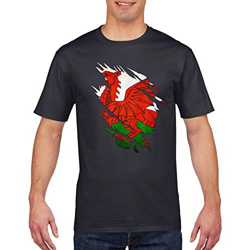 afe4da96d7f34a Am shirt designs il miglior prezzo di Amazon in SaveMoney.es