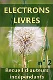 Electrons livres n° 2: Recueil d'oeuvres d'auteurs indépendants (2ème recueil). (French Edition)