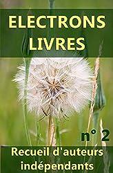 Electrons livres n° 2: Recueil d'oeuvres d'auteurs indépendants (2ème recueil).