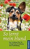 So lernt mein Hund: Der Schlüssel für die erfolgreiche Erziehung und Ausbildung - Sabine Winkler